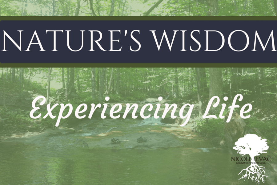 Experiencing Life-min