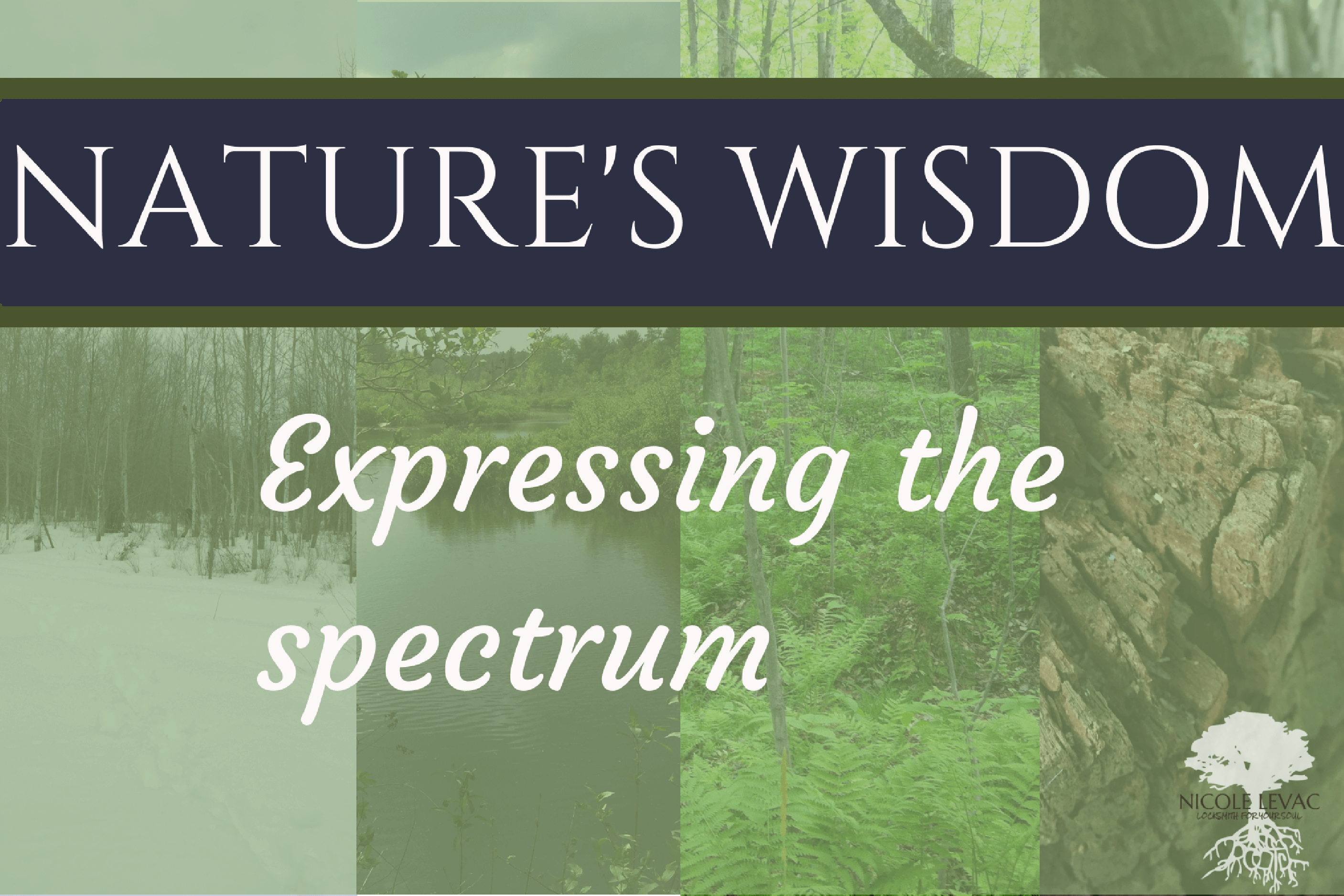 natures-wisdom-title-page-11-2-1