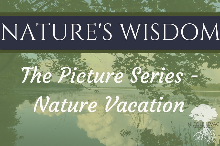 Nature`s Wisdom- Title page (12) (1)