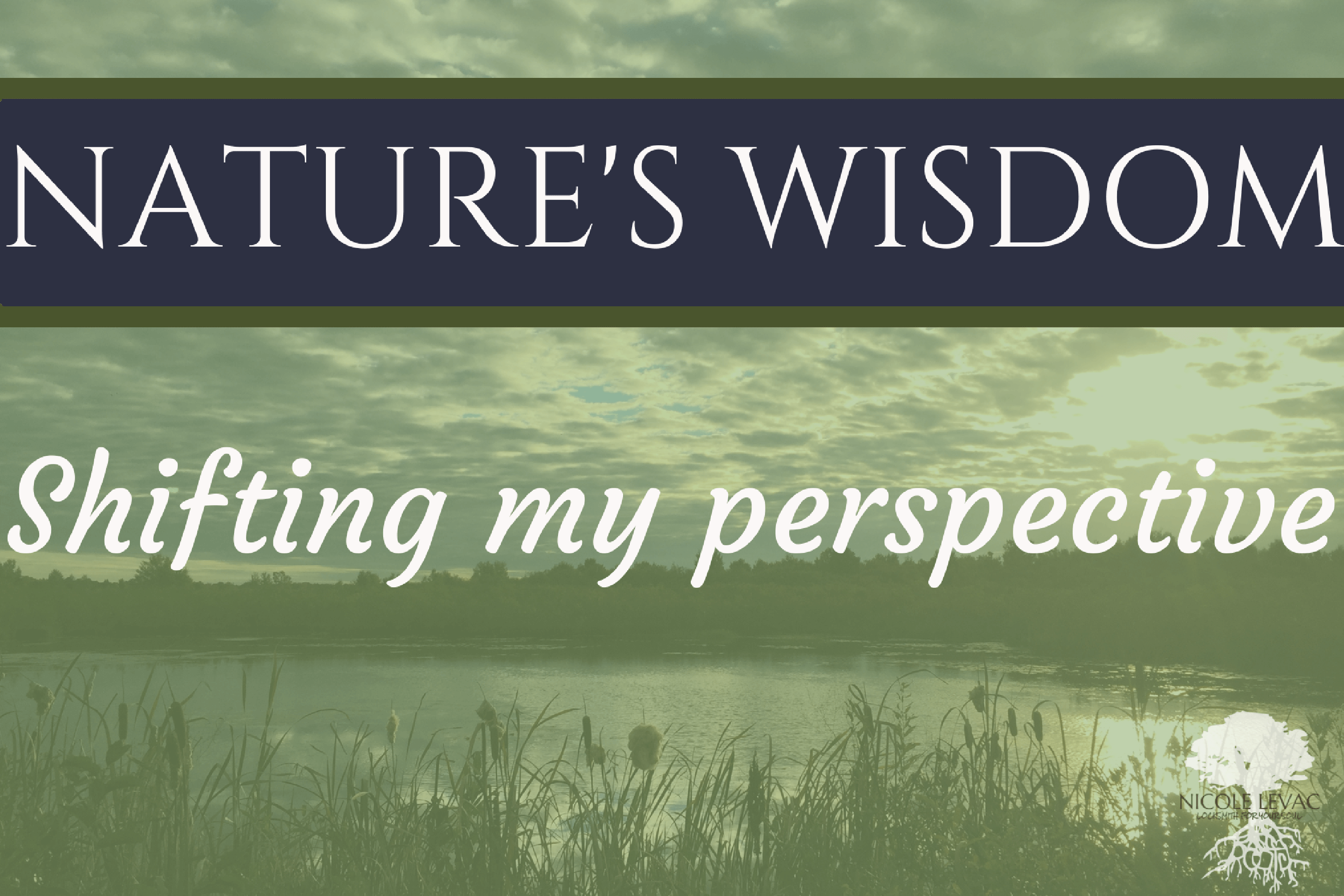 natures-wisdom-title-page-4-1