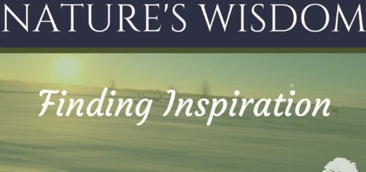 natures-wisdom-title-page-6-1