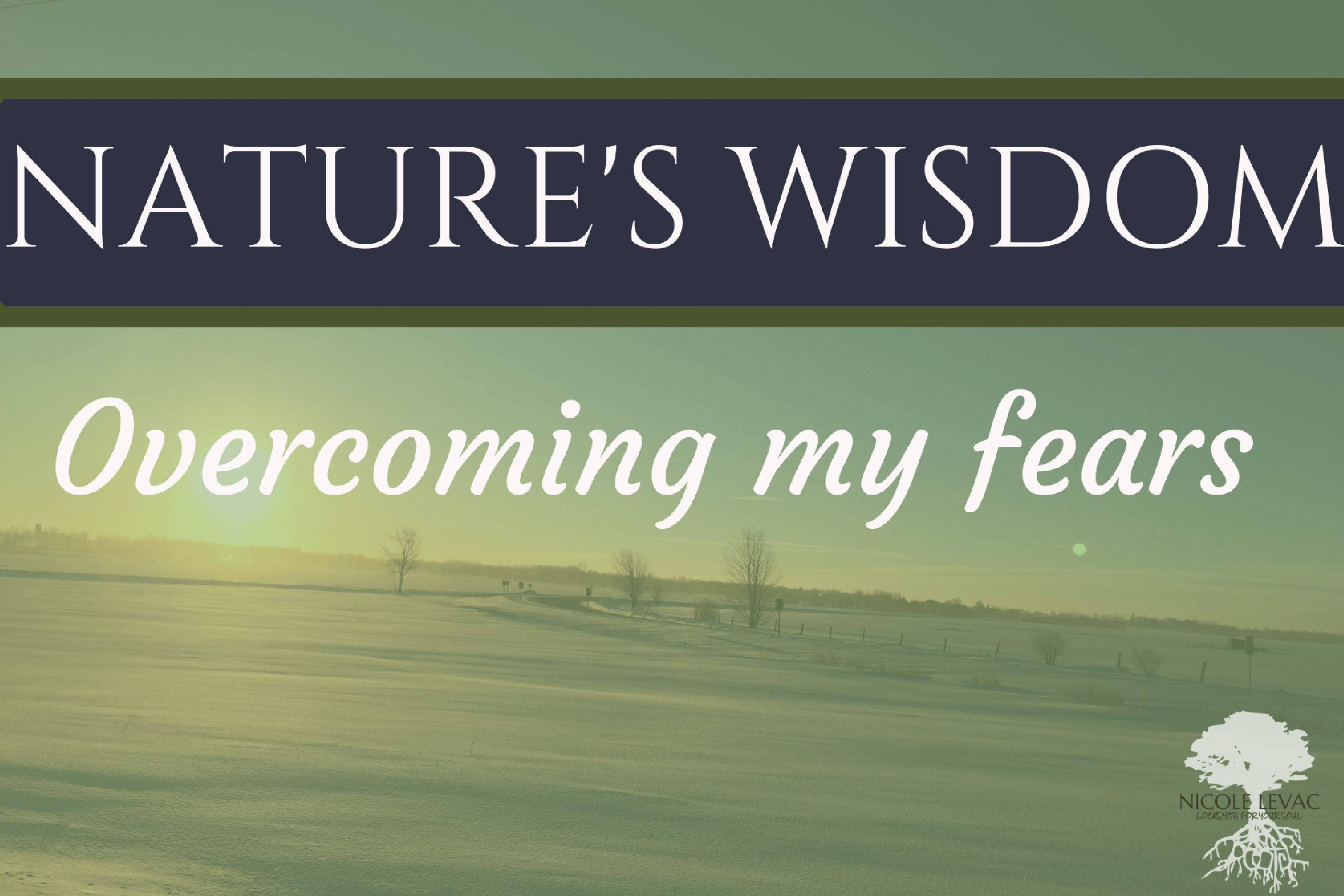 natures-wisdom-title-page-6-2