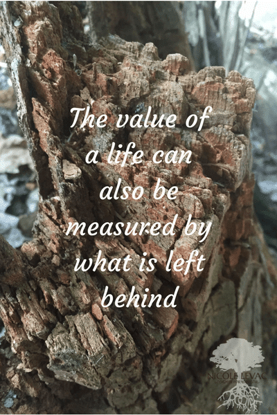 the-value-of-a-life-1