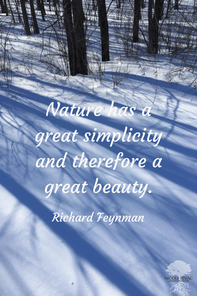 Nature's simplicity Richard-Feynman-1