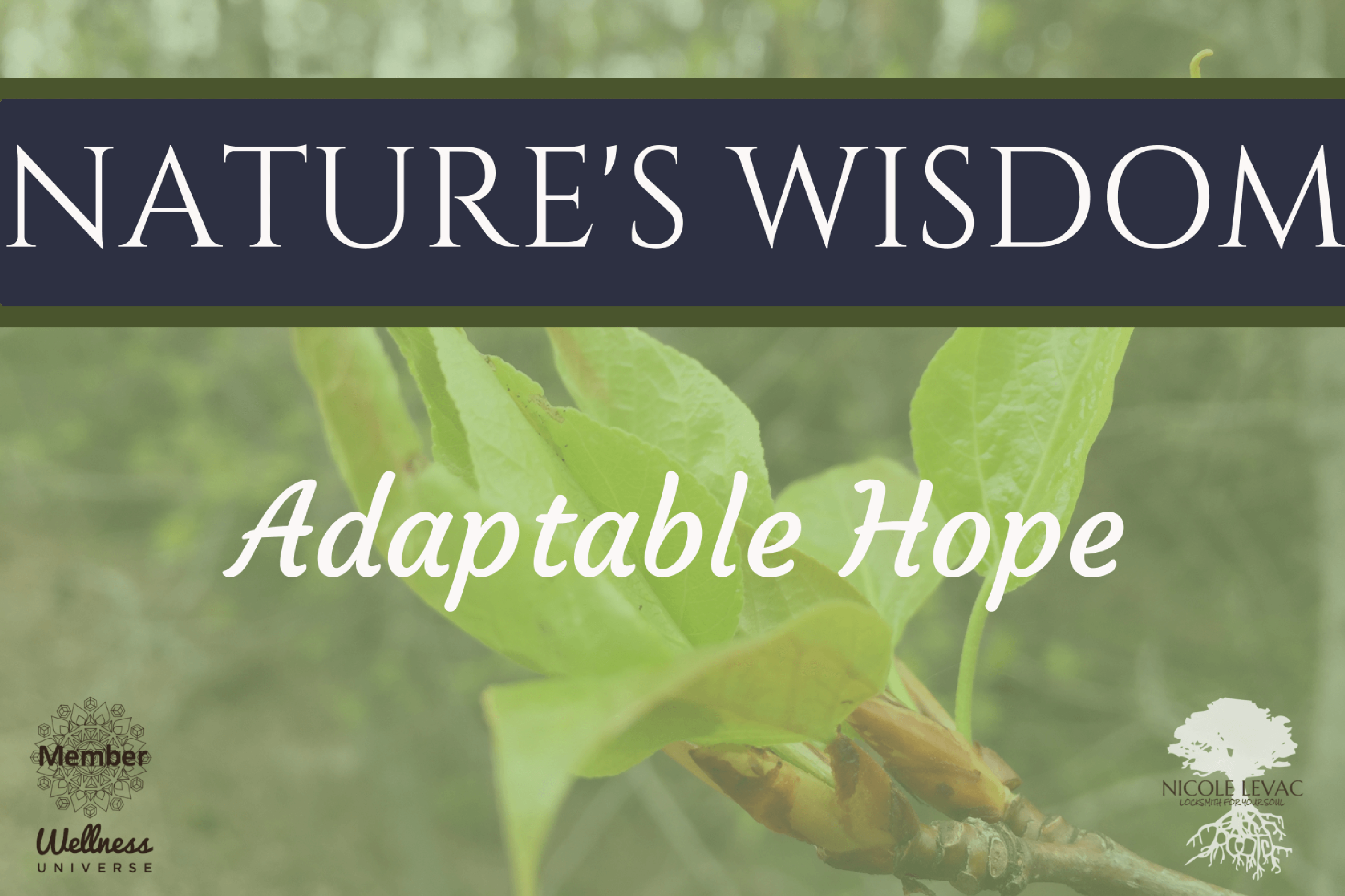 Nature's Wisdom: Adaptable Hope